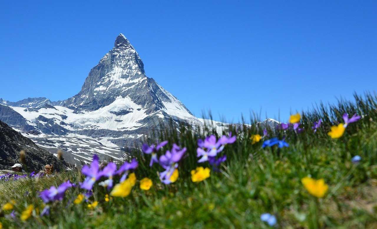 immocation Stammtisch Schweiz